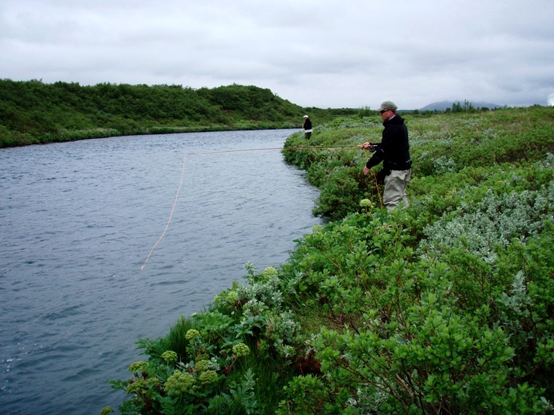 River Brúará, arctic Char, Iceland