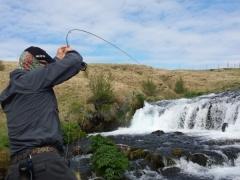 Truot fishing in Iceland