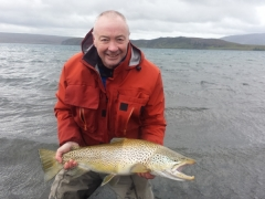 Brown trout fishing in iceland, Lake thingvellir