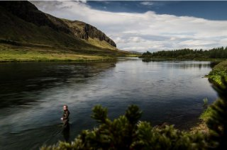 Salmon River Sog-Iceland.jpeg