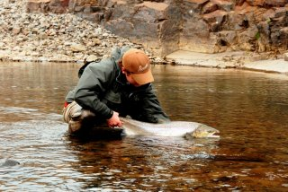 River Midfjardara, salmon,fishing,Iceland
