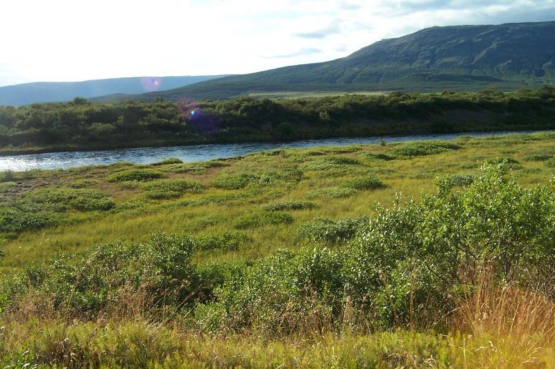 bruara-bruara-Fishing in Iceland, River Bruara-Arctic Char
