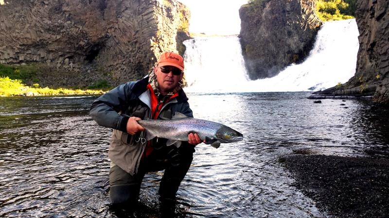Nice salmon landed in Hjálparfoss