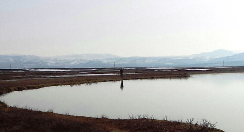 rver-litlaa, sea trout, fishing, Iceland