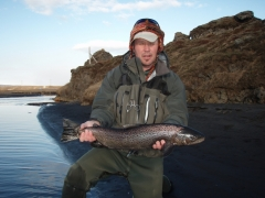 Sea Trout fishing in Iceland
