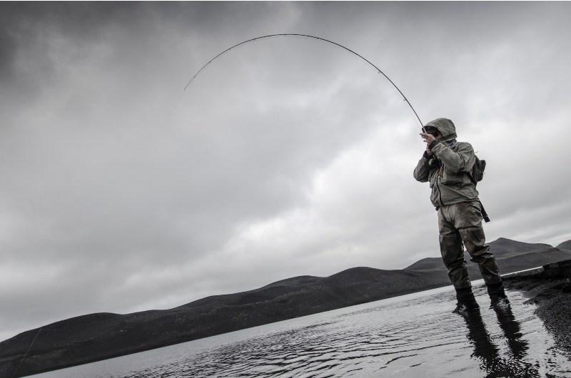 tindavatn, Iceland brow trout.