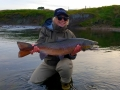 Nice-trophy-salmon-in-Iceland-8