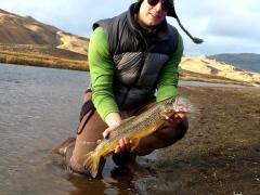River Fossá, trout