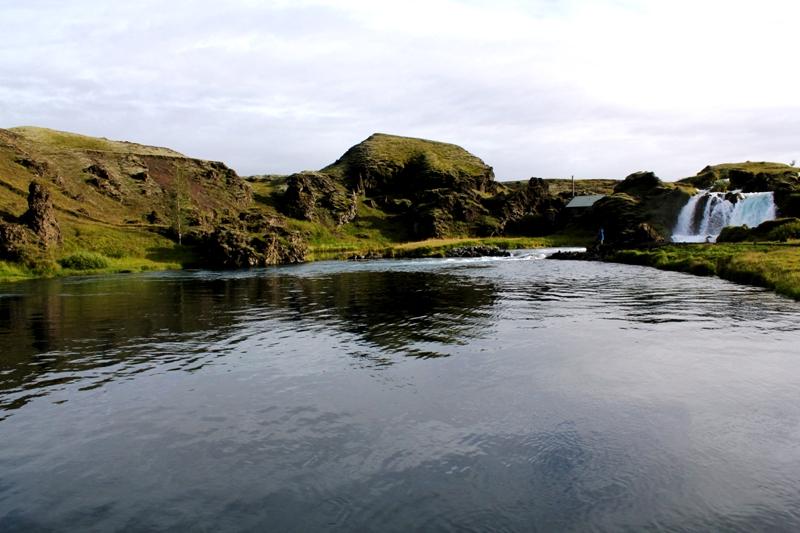Tungulækur, Sea trout-Iceland