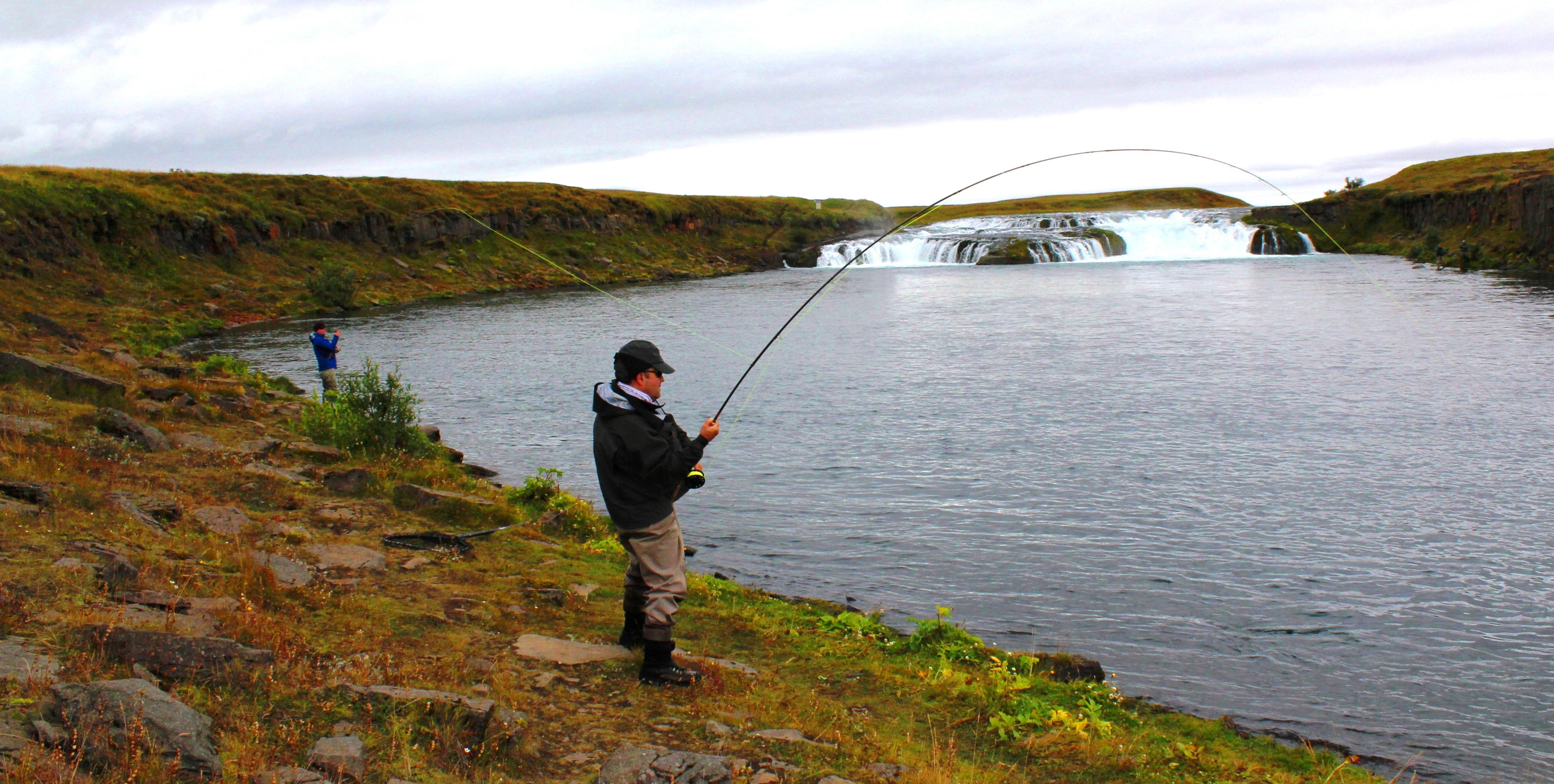Salmon Iceland (8)