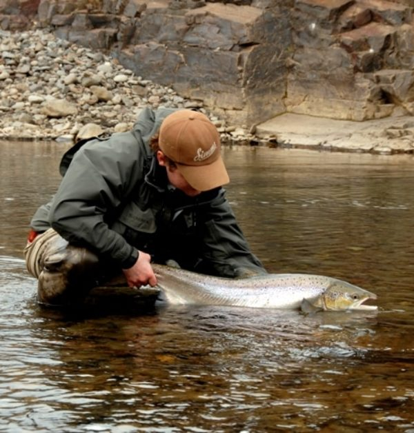 Salmon, Iceland, fly fishing, angling