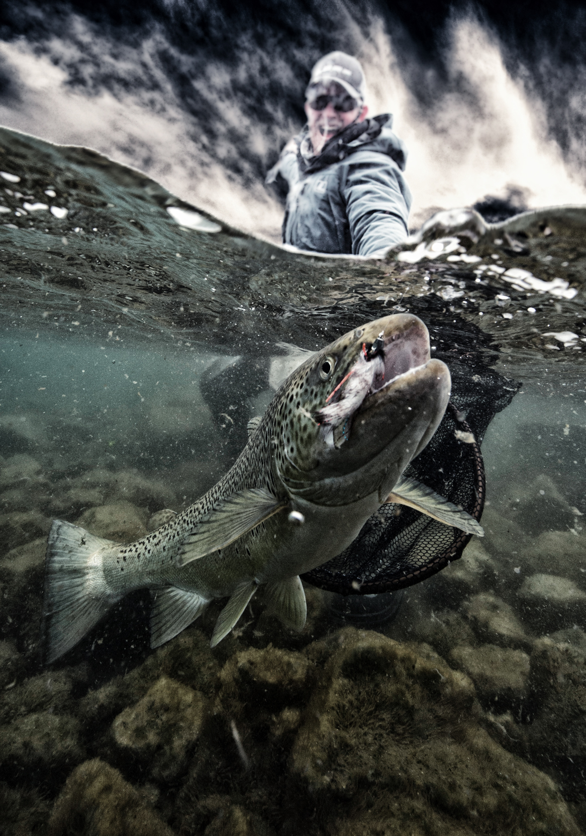 Thingvellir, Iceland, Trout, fishing