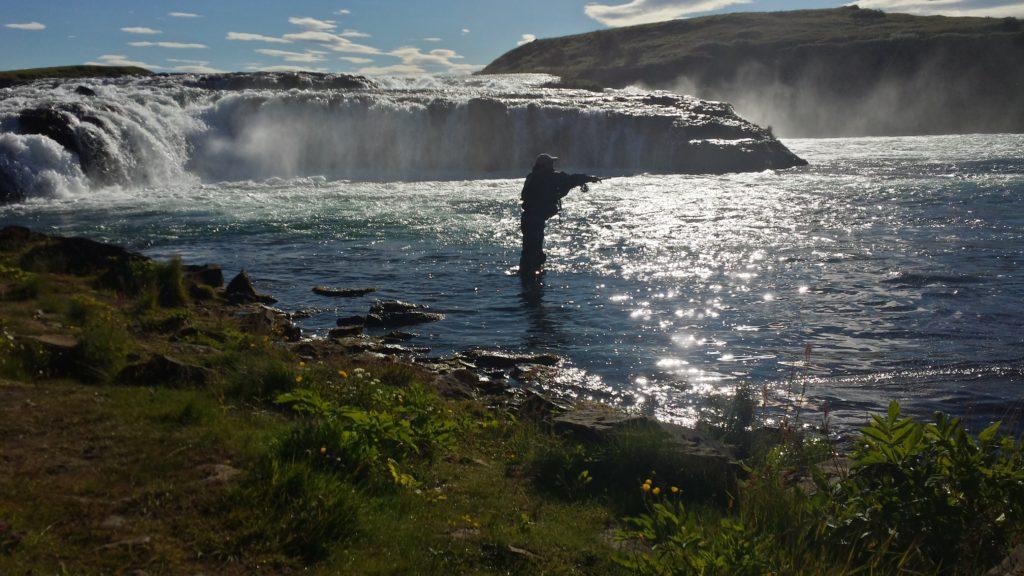 Salmon-Iceland-fly fishingöangling-west ranga