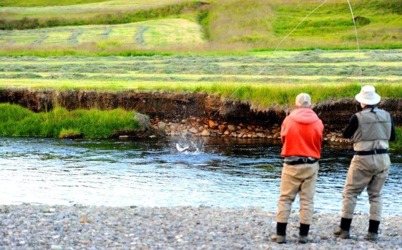 Midfjardara, Iceland, salmon fishing, Iceland, fly fishing