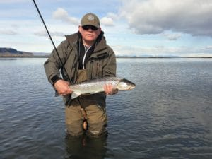 Vatnamót, sea trout, trout, fishing, Iceland, fly fishing