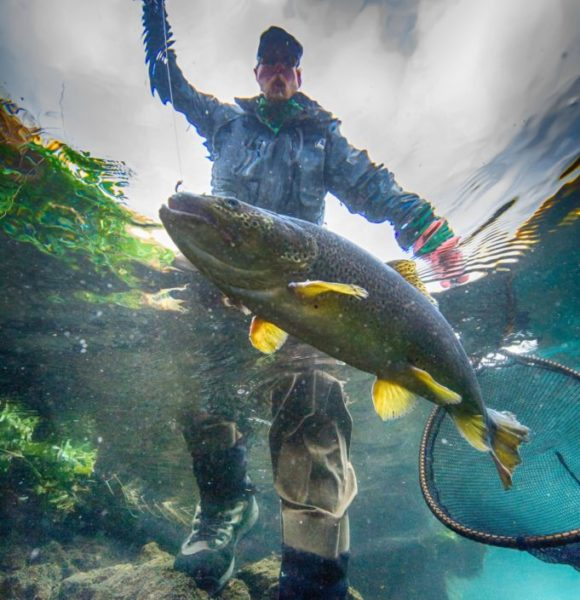 Iceland-Trout-Fishing,Angling-brown trout