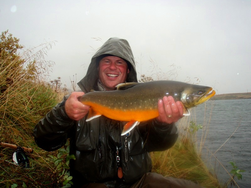 River Hólaá. Arctic Char, trout, fishing,fly fishing, Iceland, trout